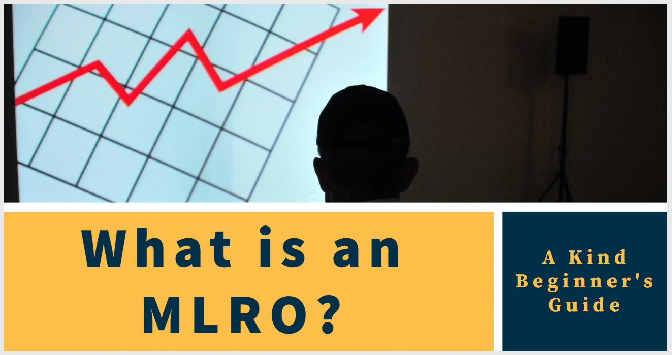 What is an MLRO